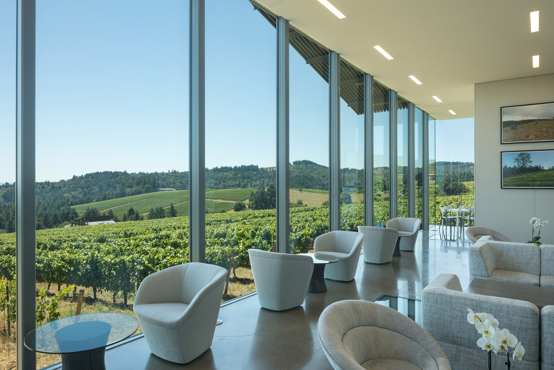 Interior Furioso Winery - Waechter Architecture