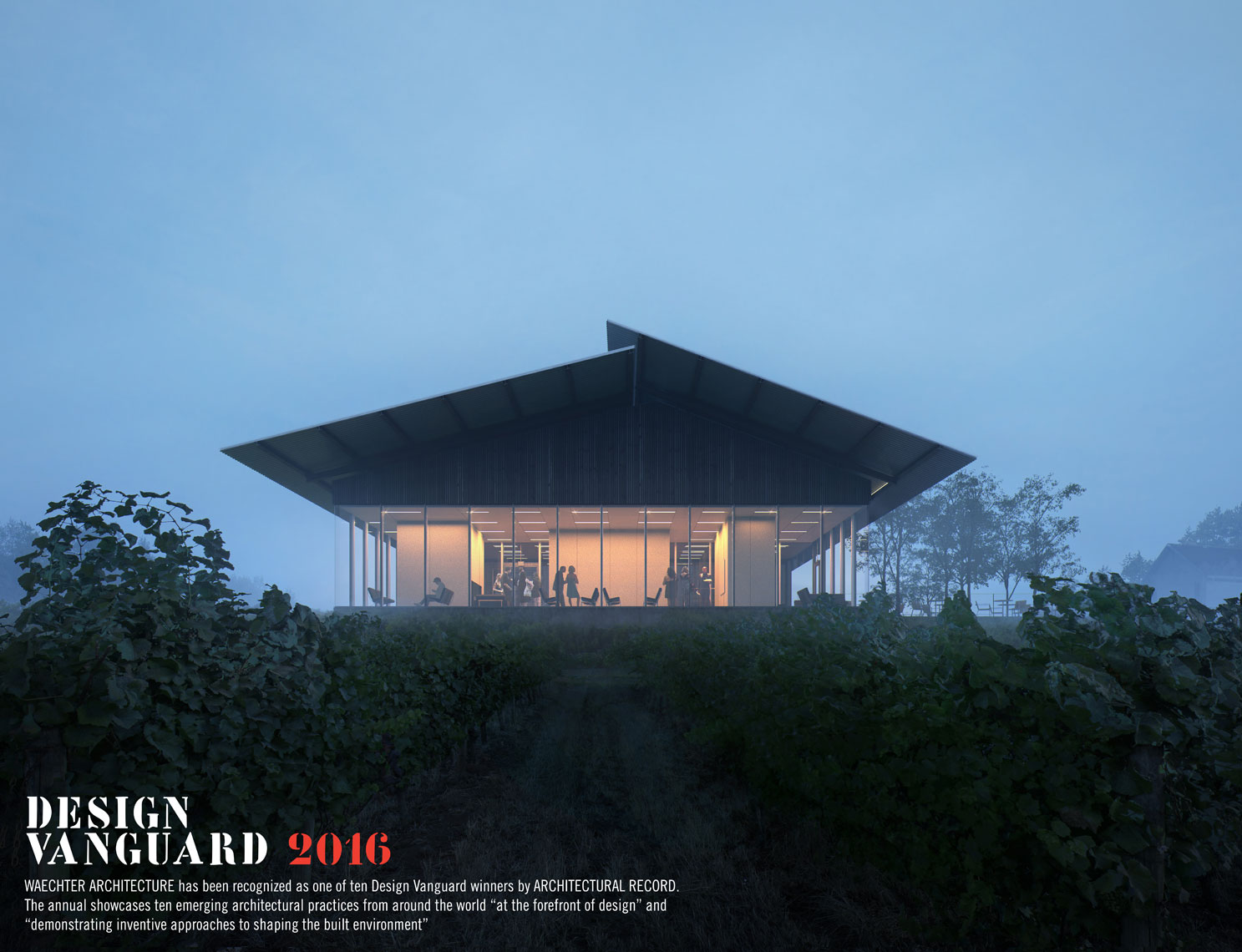 WaechterArch_Furioso Vineyard_Blue Hour-DesignVanguard